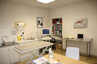 Consultation, clinique vétérinaire des iles